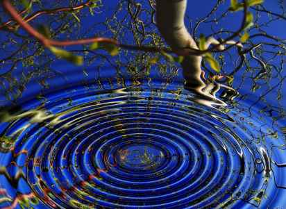 The Ripple Effect – Tonia Byerley